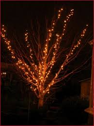 restring christmas tree lights how to string lights on outdoor tree branches inspirational