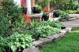 awesome easy landscaping ideas cheap gardening ideas cheap