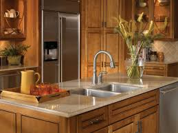 Kitchen Faucet Sprayer Repair by Kitchen Faucet Cohesion Delta Kitchen Faucet Delta Faucets