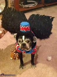 Flying Monkey Costume Flying Monkey 49 Dogs In Togs Pooches Dressed For Halloween U2026