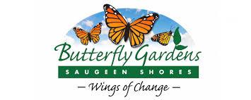 butterfly gardens of ss u2013 wings of change