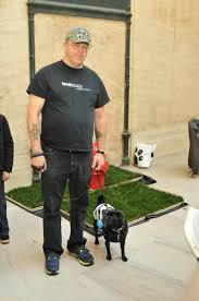 Dog Patio Pet Patio Pickup Home Facebook