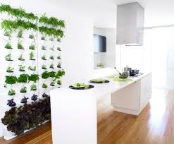 herb garden made of recyclable polypropylene herb gardens