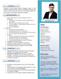 Resume Format Sample Download by Free Resume Formats Sample Resume Format Resume Templates