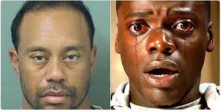 Dui Meme - tiger woods dui inspires mucho crazy internet memes look