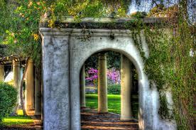 wedding arches san diego the arbor in arbor park ontop of presidio hill in san diego