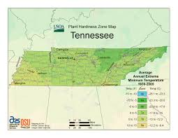 Usa Map Time Zones by Current Local Time In Memphis Tennessee Usa Tennessee Eclipse