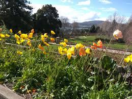 Botanic Gardens Hobart Royal Hobart Botanical Gardens Lifestyle Tasmania Discover