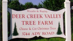 baltimore and central maryland christmas tree farms choose and