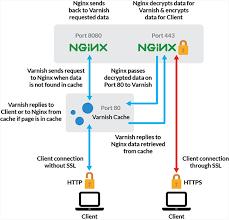 https how use varnish nginx to serve wordpress over ssl http on debian 8