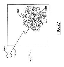 patent us20050215764 biological polymer with differently charged