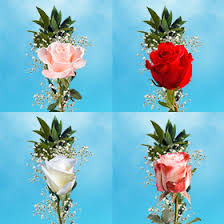 single roses with greenery s day fundraiser flowers
