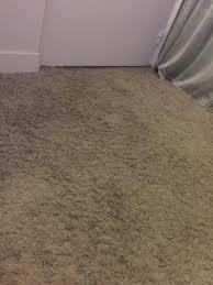 moquette epaisse chambre moquette epaisse chambre frais chambre vieillotte propre mais au sol