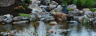 Backyard Pond Landscaping Ideas Backyard Pond Landscape Ideas The Pond Doctor