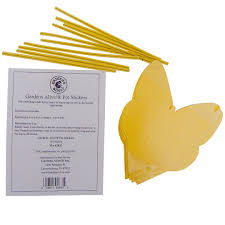 Tiny Flying Insects In House by Amazon Com Pot Stickers For Small Flying Insects Pkg Of 10