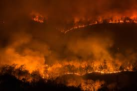 Canada Wildfires by Thousands Evacuate As Wildfires Blaze Across Part Of Canada And