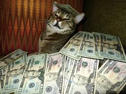 Rich Cat Meme - rich cats rolling in cash 2 memes pinterest funny things and