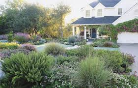 Grassless Backyard Ideas Lawn Less Yard Solutions This Old House