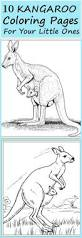 14 best color pages images on pinterest animal coloring pages