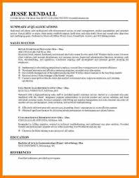 Resume Summaries Examples by 8 Examples Of Resume Summary Resume Reference