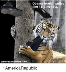 Herding Cats Meme - oterrellafter mathcom obama foreign policy like herding cats