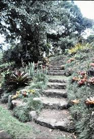 Wilson Botanical Gardens by Central America Gardening In The Coastal Southeast
