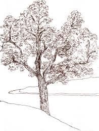 orange explains it all tree sketches