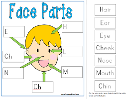 labeling face body parts center mat this teaching tool is a part