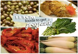 tcm fertility diet tcm foods to get pregnantpregnant in