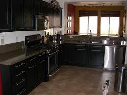 Small Kitchen Black Cabinets Kitchen Entrancing Colored Kitchen Cabinets With Black
