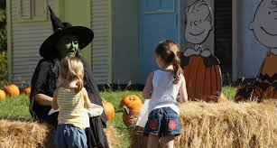 Pittsburgh Pumpkin Patch 2015 by The Fall Train Ride In Texas That Takes You To A Pumpkin Patch