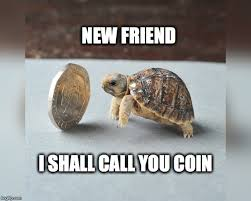 Turtle Memes - the meme ing of life rich turtle