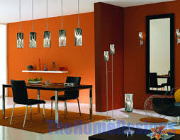 burnt orange walls with fireplace colour in interior design