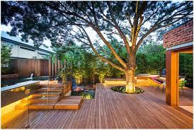 Best Trees For Backyard by Backyards Modern 114 Best Tree For Backyard Privacy Trendy Best