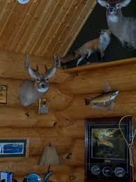 home interior deer pictures log home design services timber wolf handcrafted log homes inc