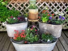 container garden plans for shade home outdoor decoration