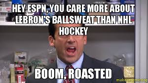 Nhl Meme - hey espn you care more about lebron s ballsweat than nhl hockey