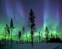 Northern Lights Comforters Brewster Home Fashions Aurora Borealis Northern Lights 8 U0027 X 118