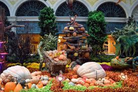 Botanical Gardens In Las Vegas Bellagio Fall 2015 Botanical Gardens Las Vegas Cvetybaby