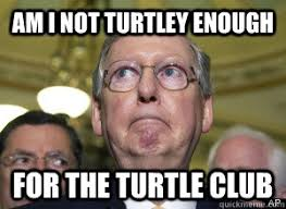Mitch Meme - am i not turtley enough for the turtle club mitch mcconnell