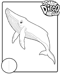 diego coloring pages chuckbutt