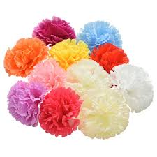 Carnation Flower Compare Prices On Silk Carnation Flowers Online Shopping Buy Low