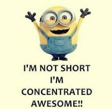 i m not i m concentrated awesome i will probably annoy you when i visit cause you won t be able to