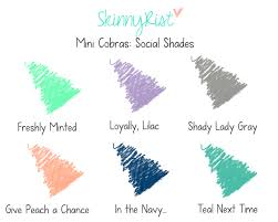skinnyrist goes creative with color names rist bracelets