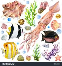 Exotic Theme Exotic Fish Coral Reef Algae Unusual Stock Illustration 291066203