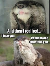 So In Love Meme - 16 best otter memes images on pinterest ha ha otters and funny