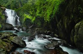Black Forest Waterfall Window 1 Travel In Taiwan Attractions Hot Spots New Taipei City