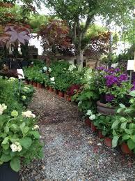 garden centers in woodstock ga and canton ga plant nurseries