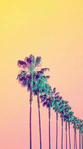 Palm Tree Wallpaper Pin By Majo Esmahan On Backgrounds Pinterest Wallpaper