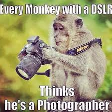 Camera Meme - monkey with camera by weimao on deviantart